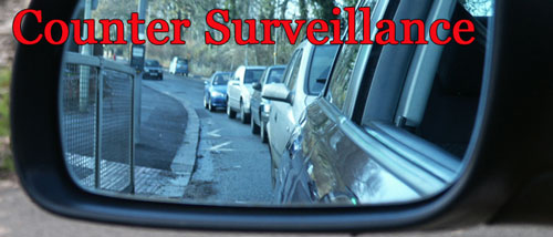 Counter Surveillance - Naples Private Investigator/Detective